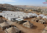 IMALB: Arsal Report